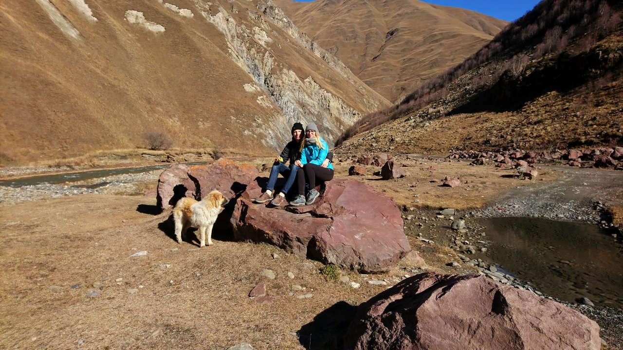 Dolina Truso - pies pasterski chce jedzenie