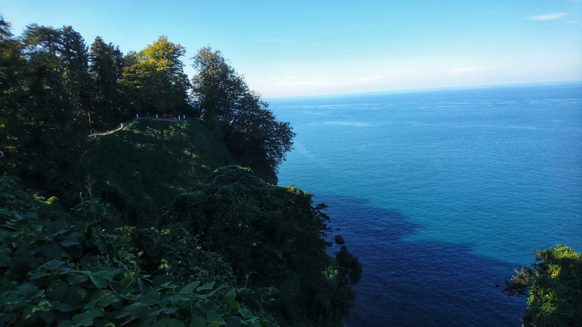 Batumi - ogród botaniczny 10
