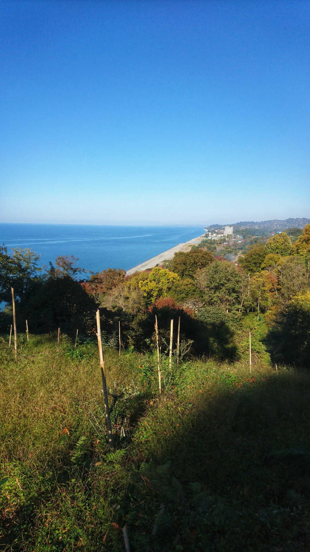 Batumi - ogród botaniczny 17