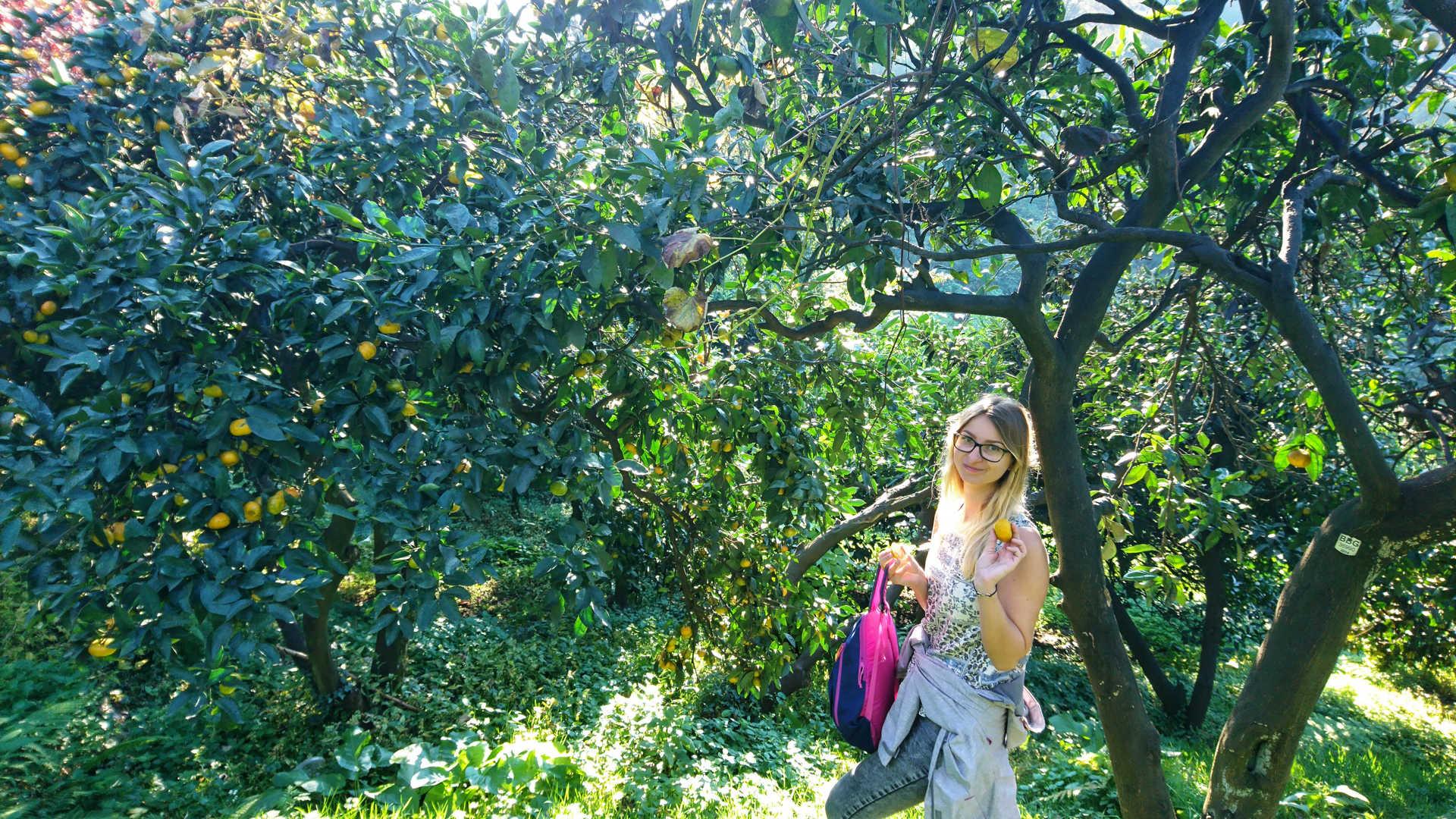 Batumi - ogród botaniczny 26