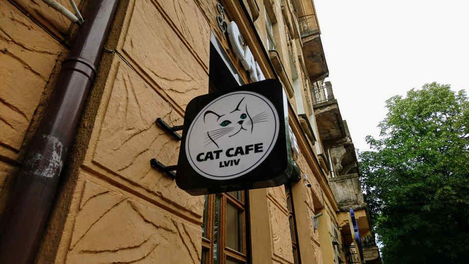 Lwowskie restauracje